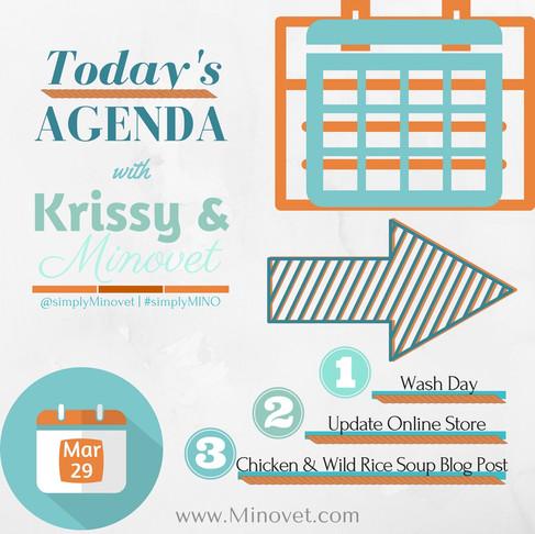 Today's Agenda 3/29/2017