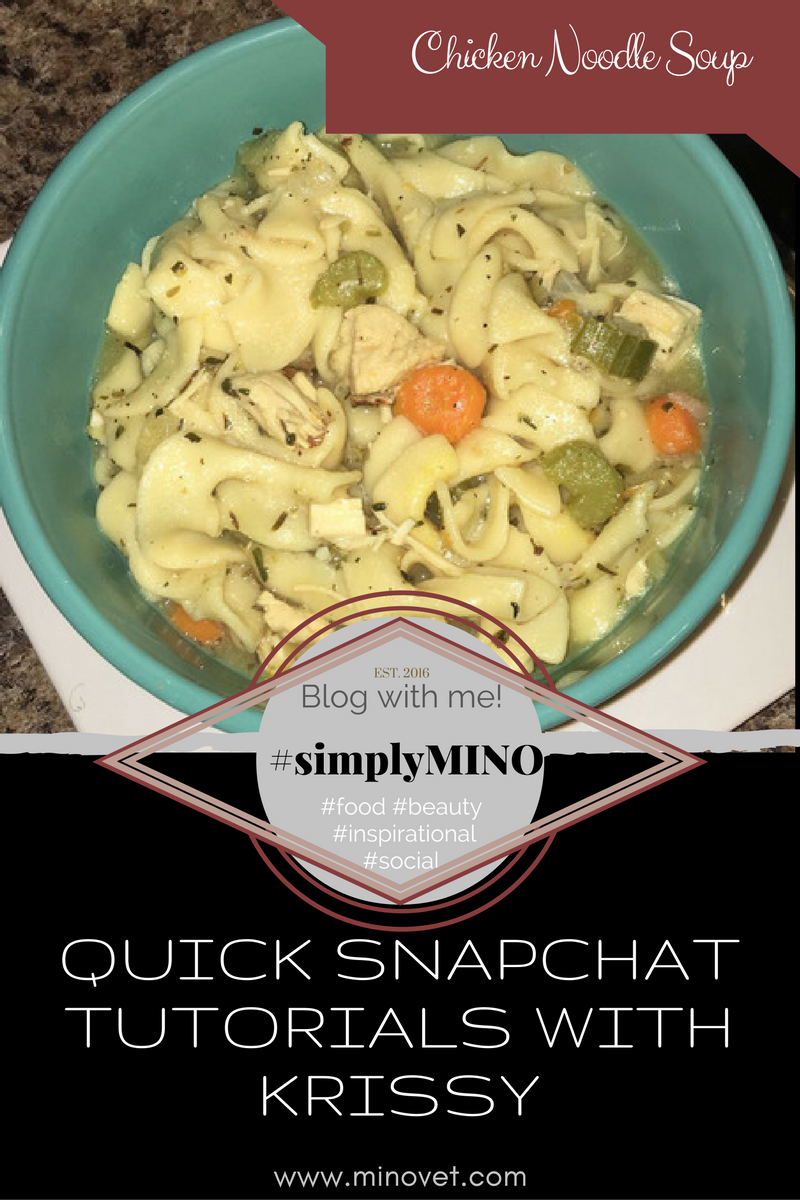 Chicken Noodle Soup, Quick Snapchat Tutorials with Krissy, #simplyEdible | Food, #simplyMINO, www.minovet.com