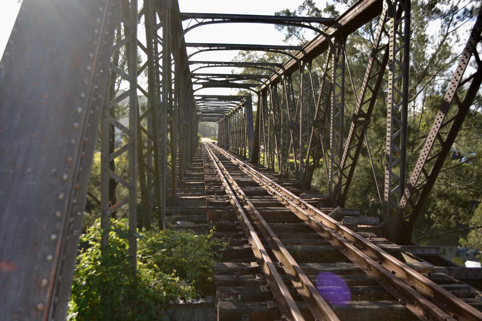 Railway tracks photo credit Naomi Fryer