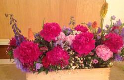 Flowers - close up