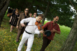 violinist walking through trees