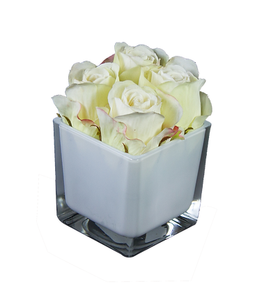 Centre de Table S 4 ROSES BLANC CUBE WH
