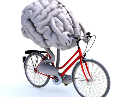Join the dots: exercise & brain function
