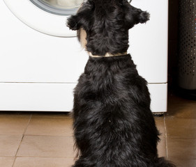 Tips On Preventing Snagging, Pilling, and Pulling At the Laundromat