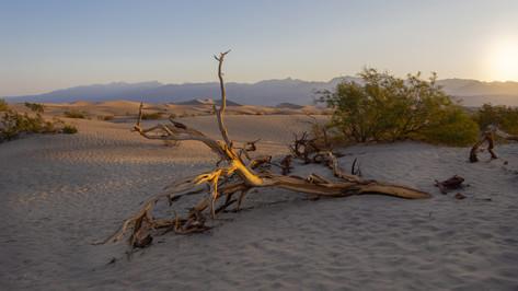 Mesquite Flat Sand Dunes, Death Valley, Kalifornien, USA 2018