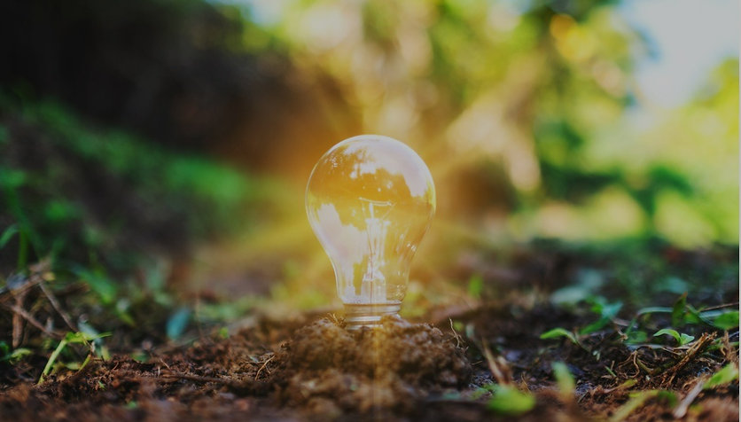 a-light-bulb-glowing-on-pile-of-soil-picture-id1199018964 (1)_edited.jpg