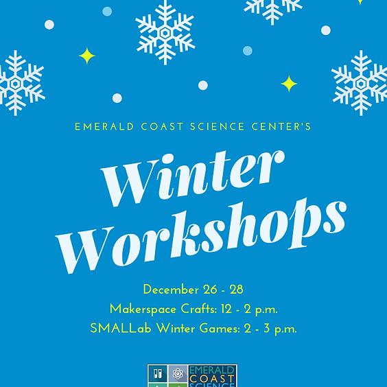 Winter Workshops: Winter Wonders- Robots!