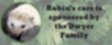 Rubin sponsored sign.png
