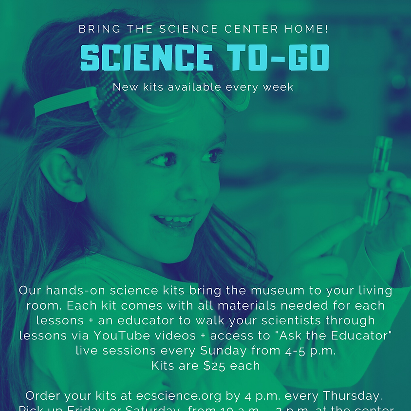 Science To-Go: Pool Noodle Engineering Circuit Challenge