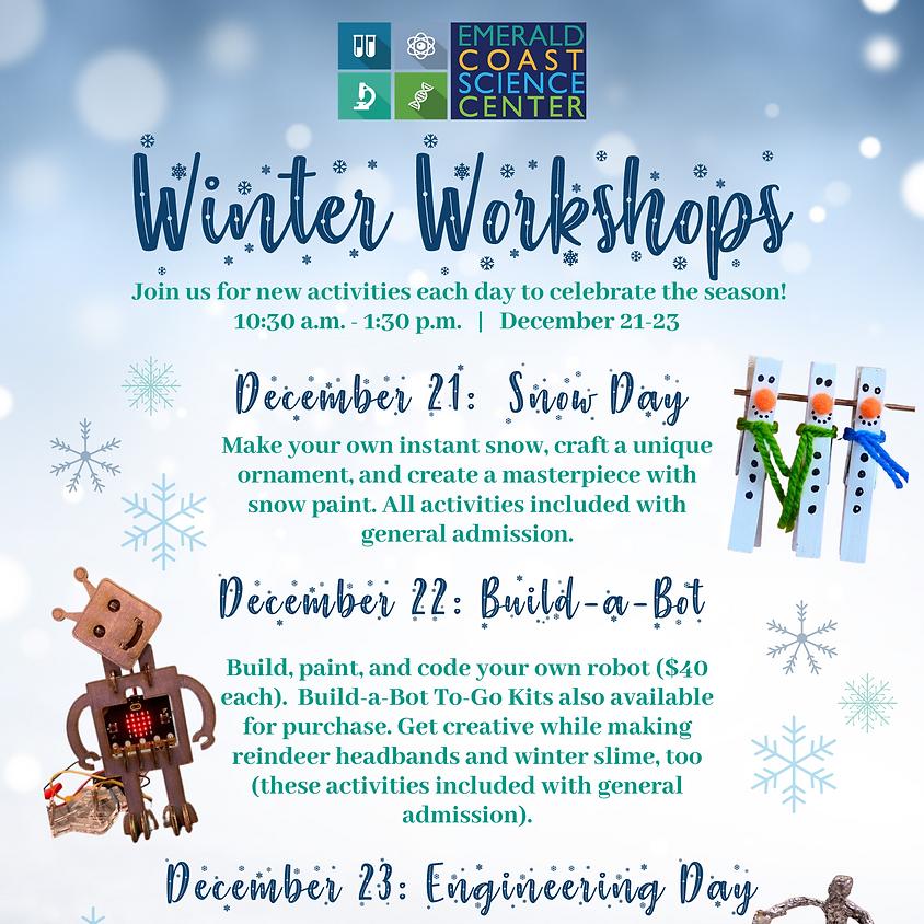 Winter Workshops: Snow Day
