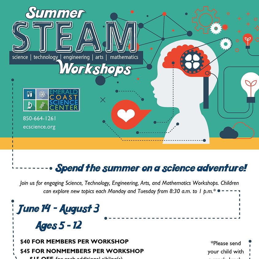 Summer STEAM Workshops: June 14- Science Kingdom *SOLD OUT*