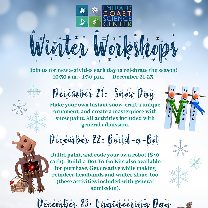 Winter Workshops: Build-a-Bot
