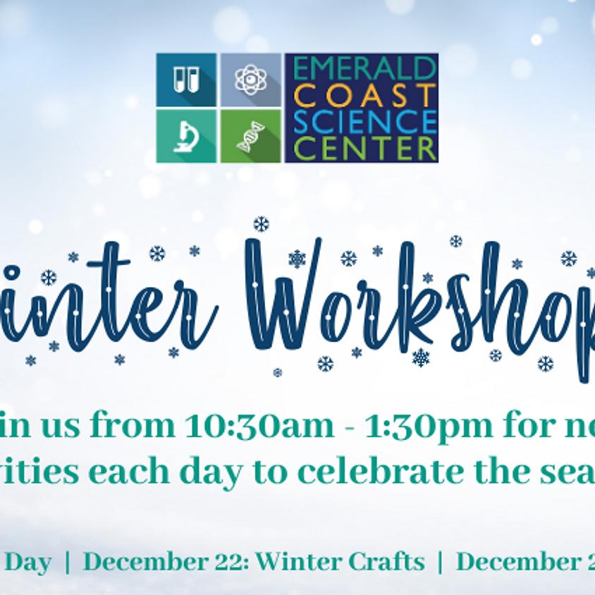 Winter Workshops: Engineering Day