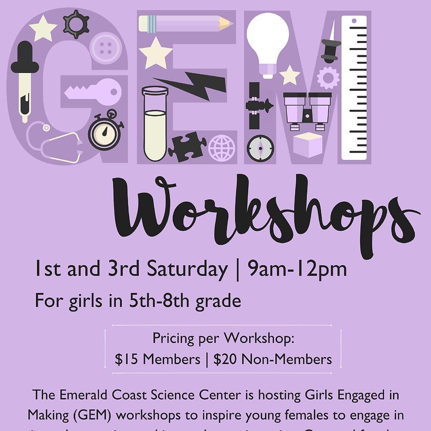 GEM Workshops  (1)
