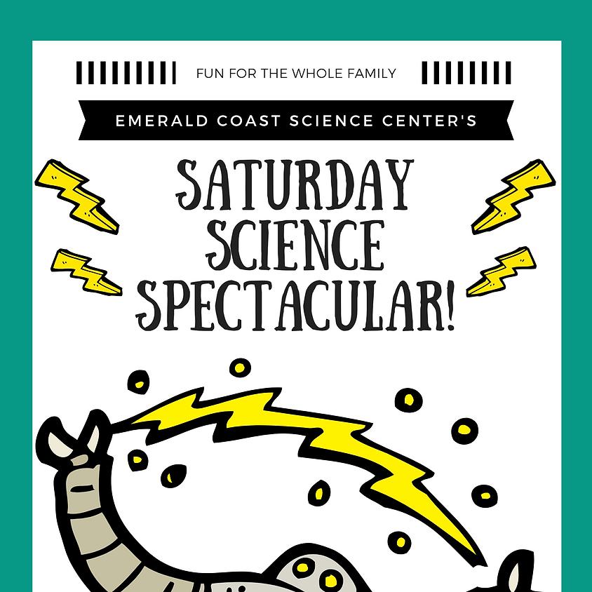 Saturday Science Spectacular   (1)