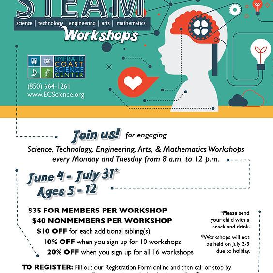 Summer STEAM Workshops