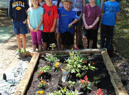 Home School Gardening Day