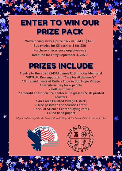 ECSC AFEV prize pack flyer.png