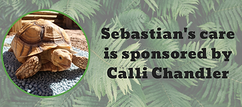 Sebastian sponsored sign (1).png