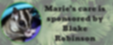 Marie sponsored sign.png