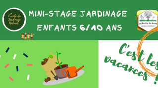 Les Mini-stages enfants reprennent en Juillet !!
