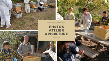 Quelques photos de l'atelier Apiculture du 4 Octobre 2020