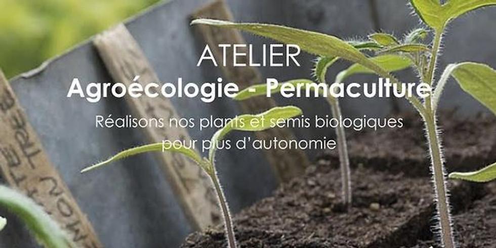 Atelier : Réalisons nos plans et semis biologiques pour plus d'autonomie