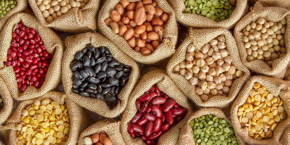 Atelier : Faire ses semences pour plus de résilience