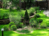 газон под ключ