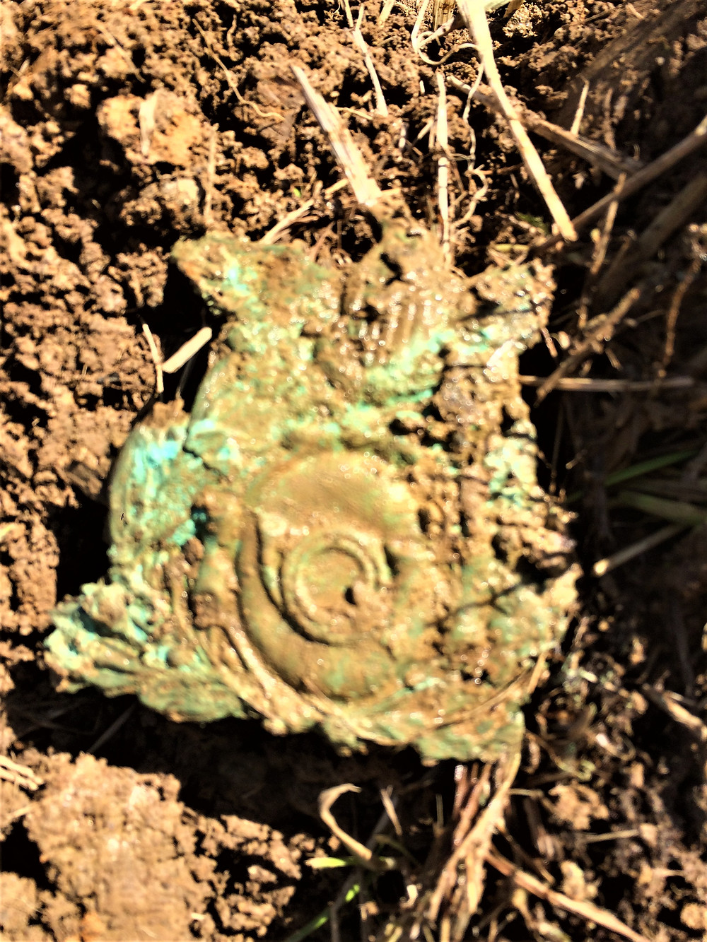 The Chasseur hat plate fresh out of the mud--sorry for the blurriness of the photo, as you can imagine my hands were shaking!