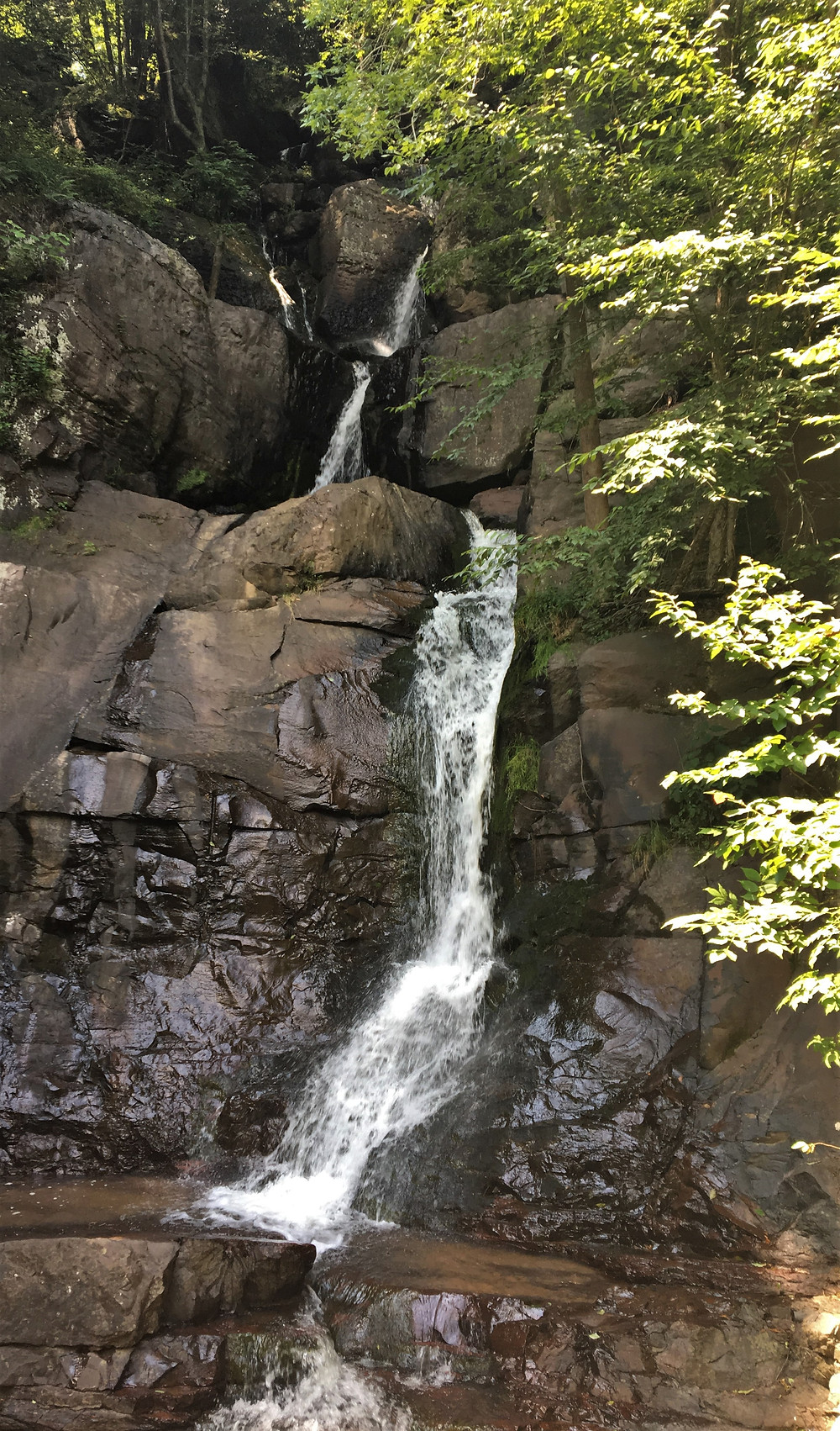 Waterfall in Lehigh Gorge State Park