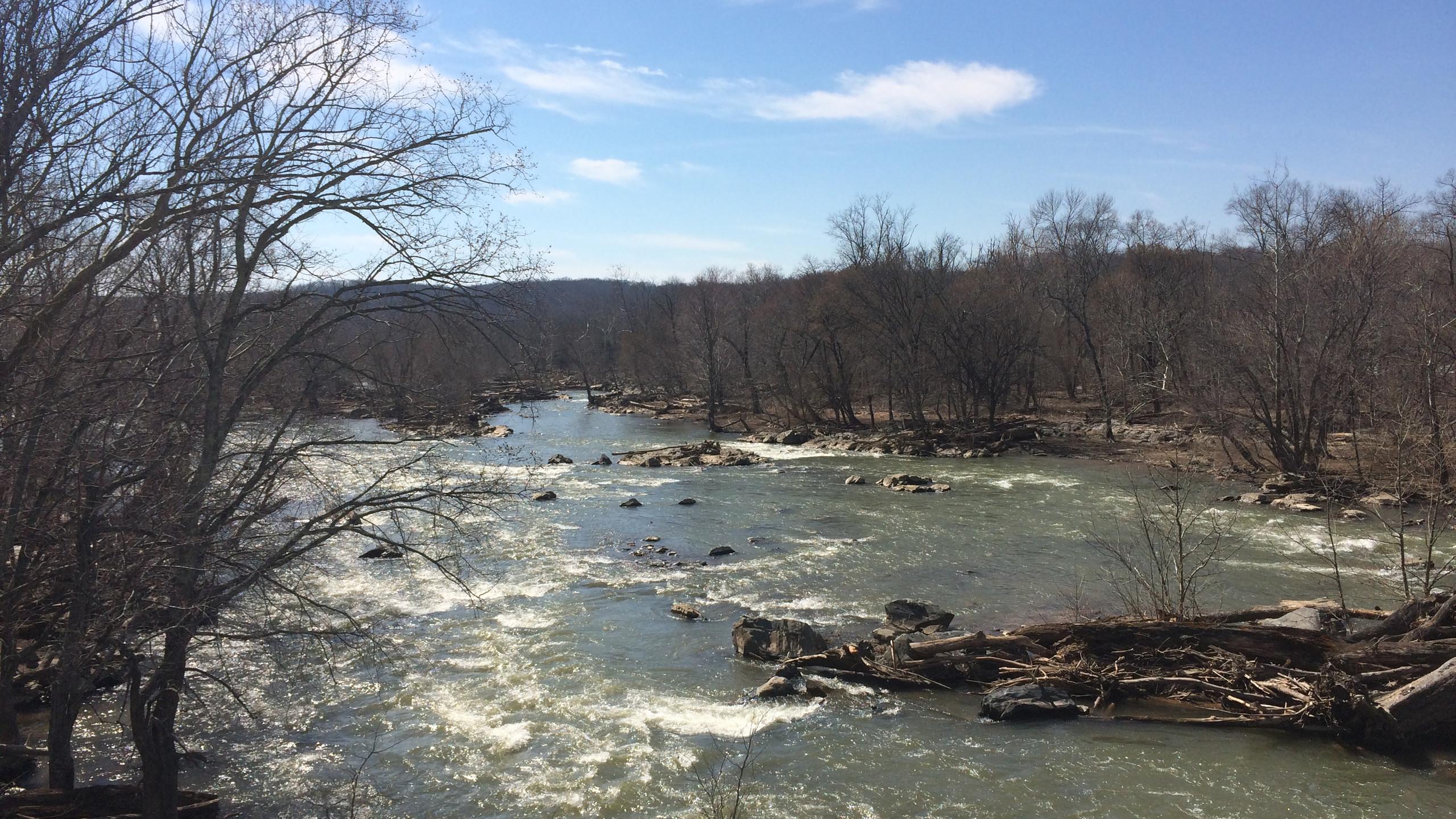 Rapids near Great Falls