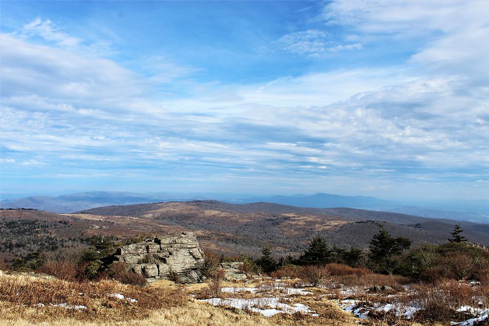Top of Wilburn Ridge Looking East