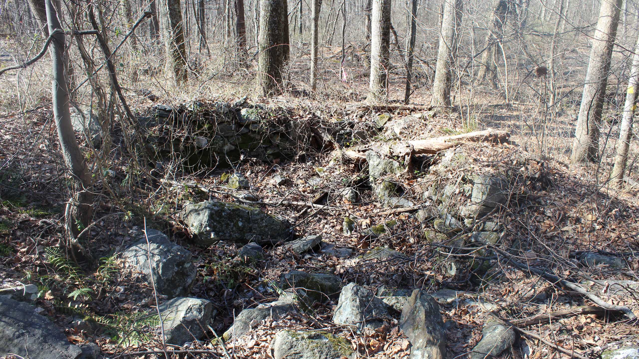 Old House Foundation on the Trail