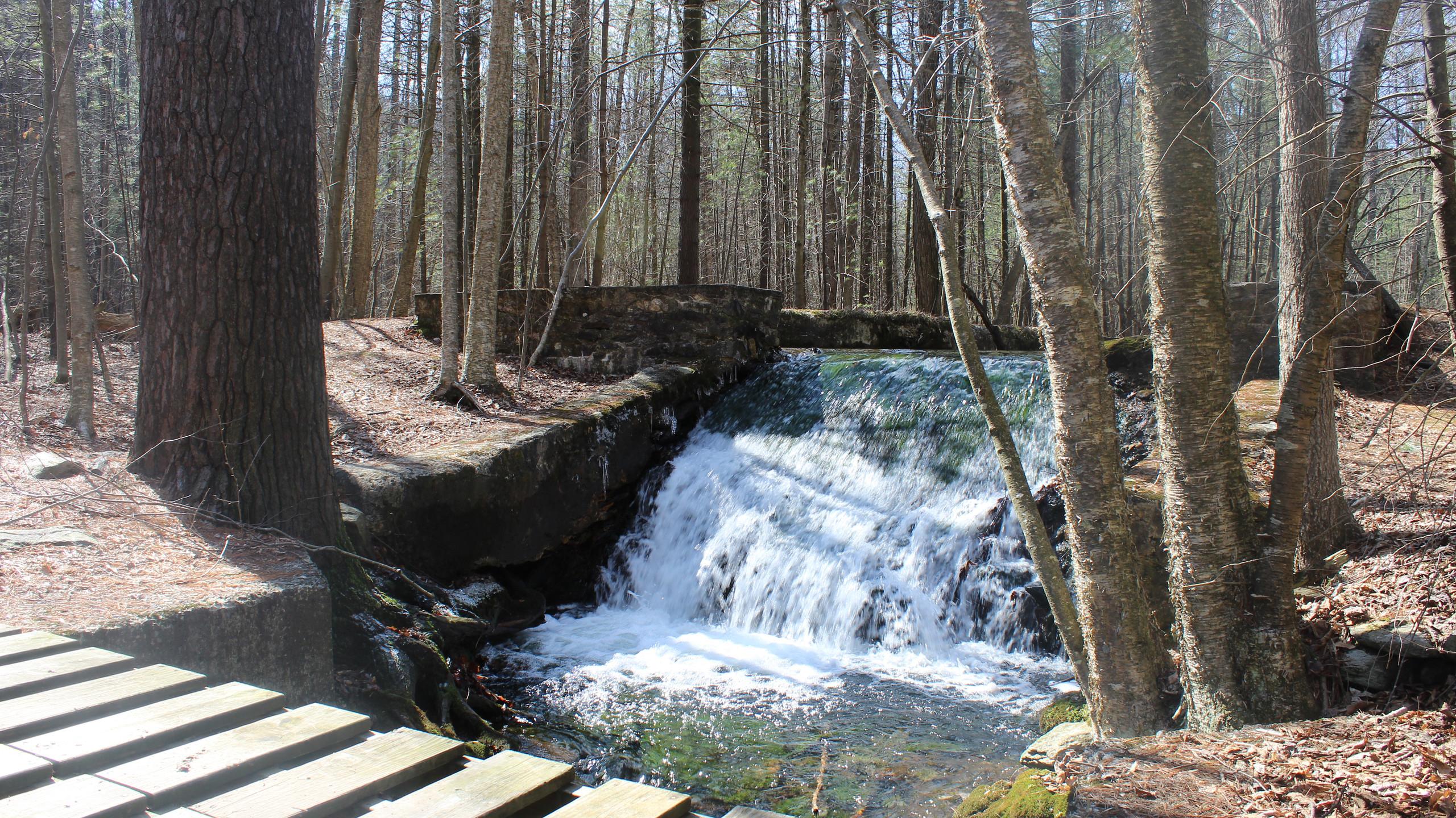 Toms Run Dam