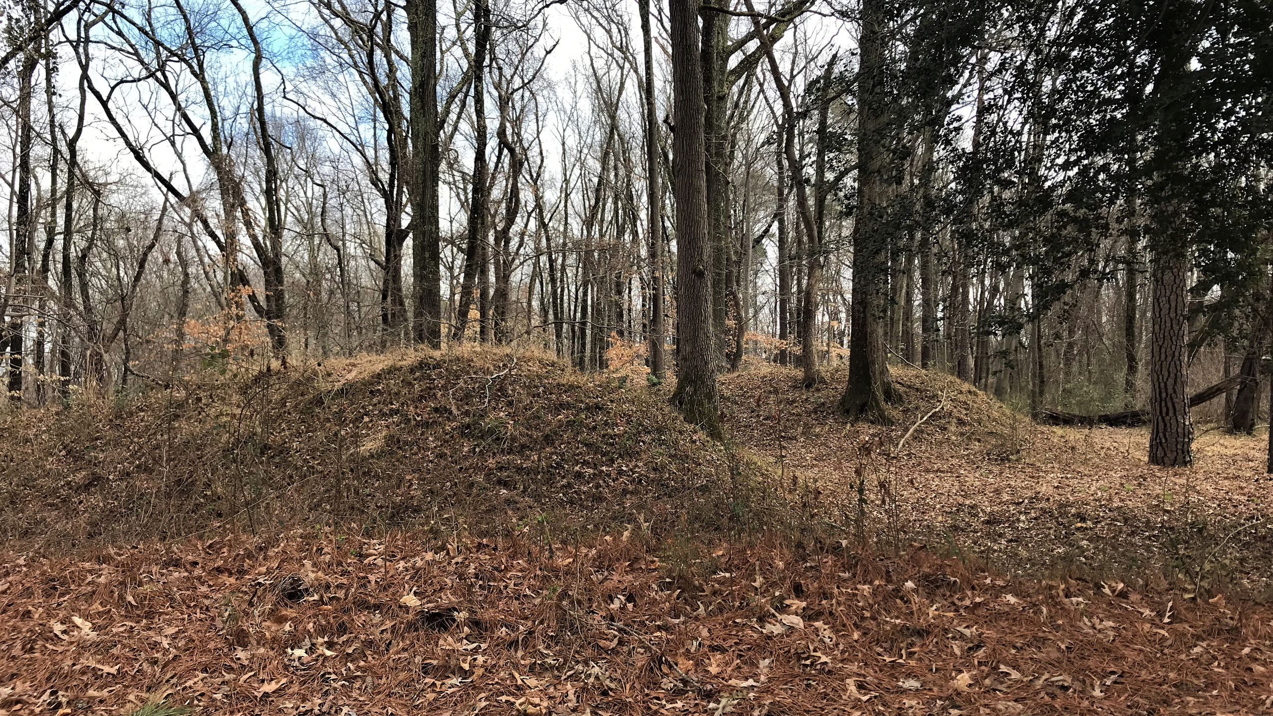 Earthworks at Chickahominy Bluff