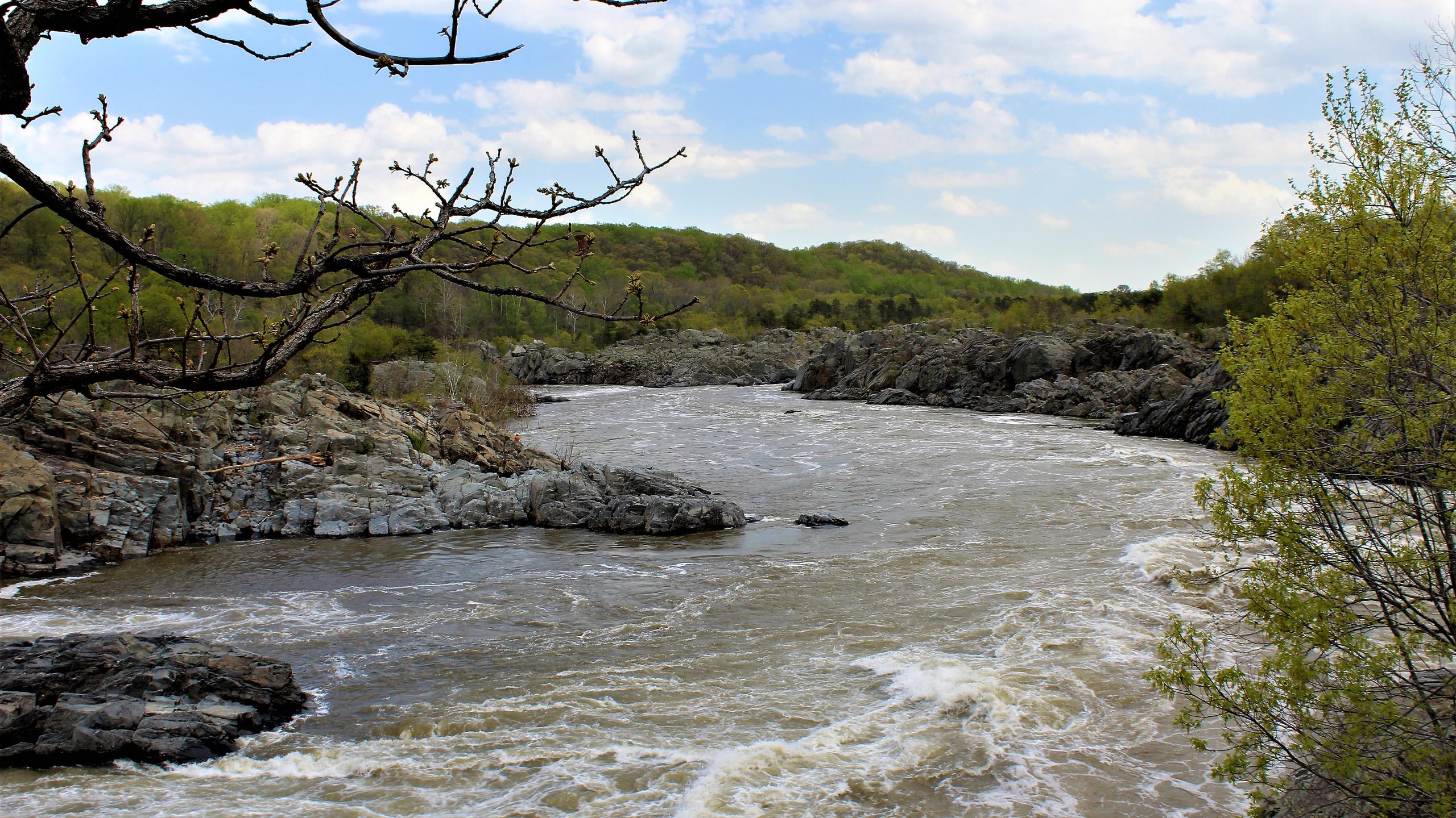 Winding River Rapids
