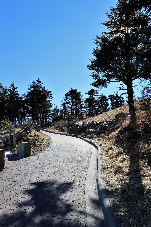 Summit Trail to Observation Platform