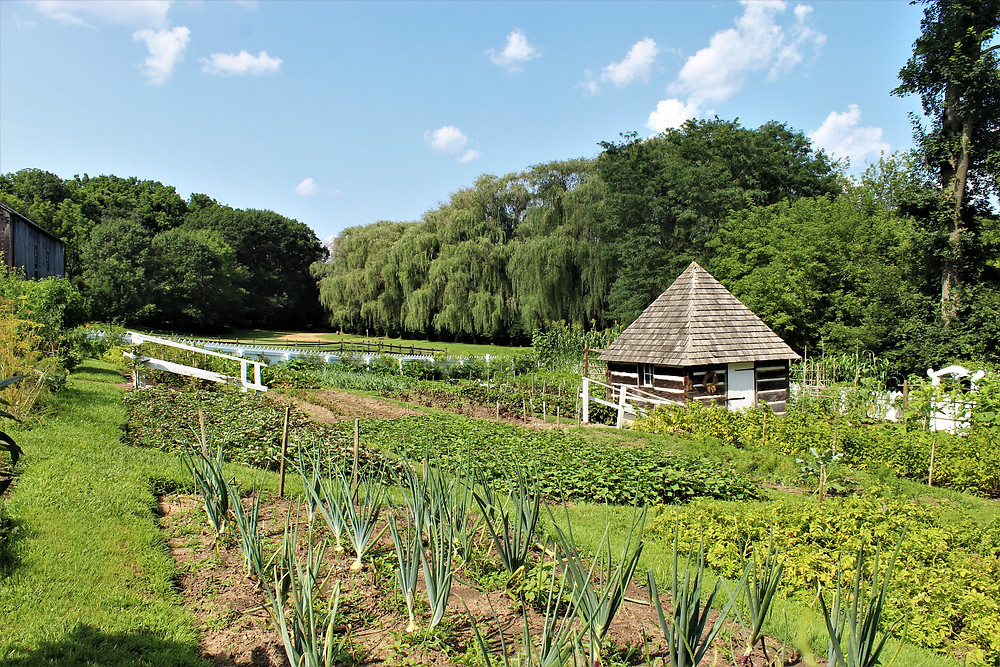 Burnside Plantation