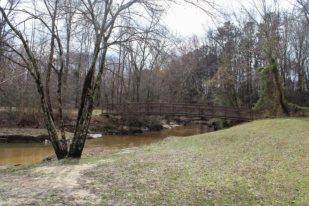 Banks of Beaver Dam Creek