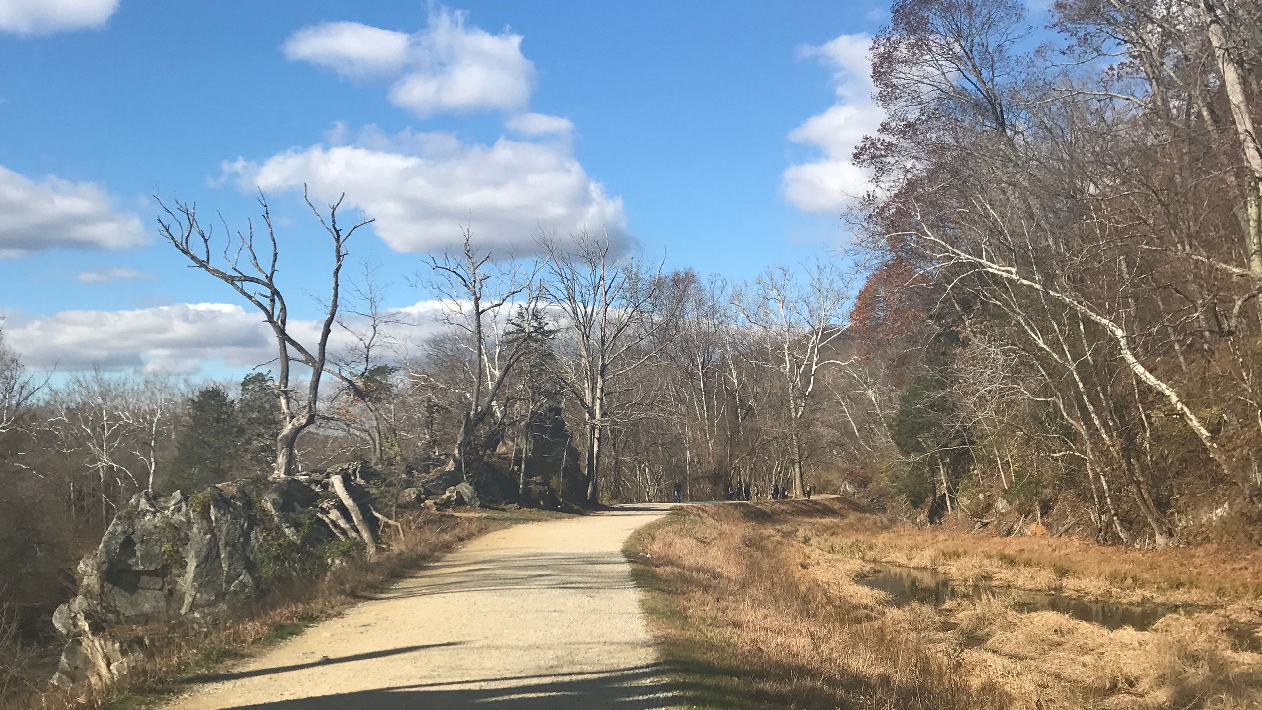 The C&O Canal Towpath