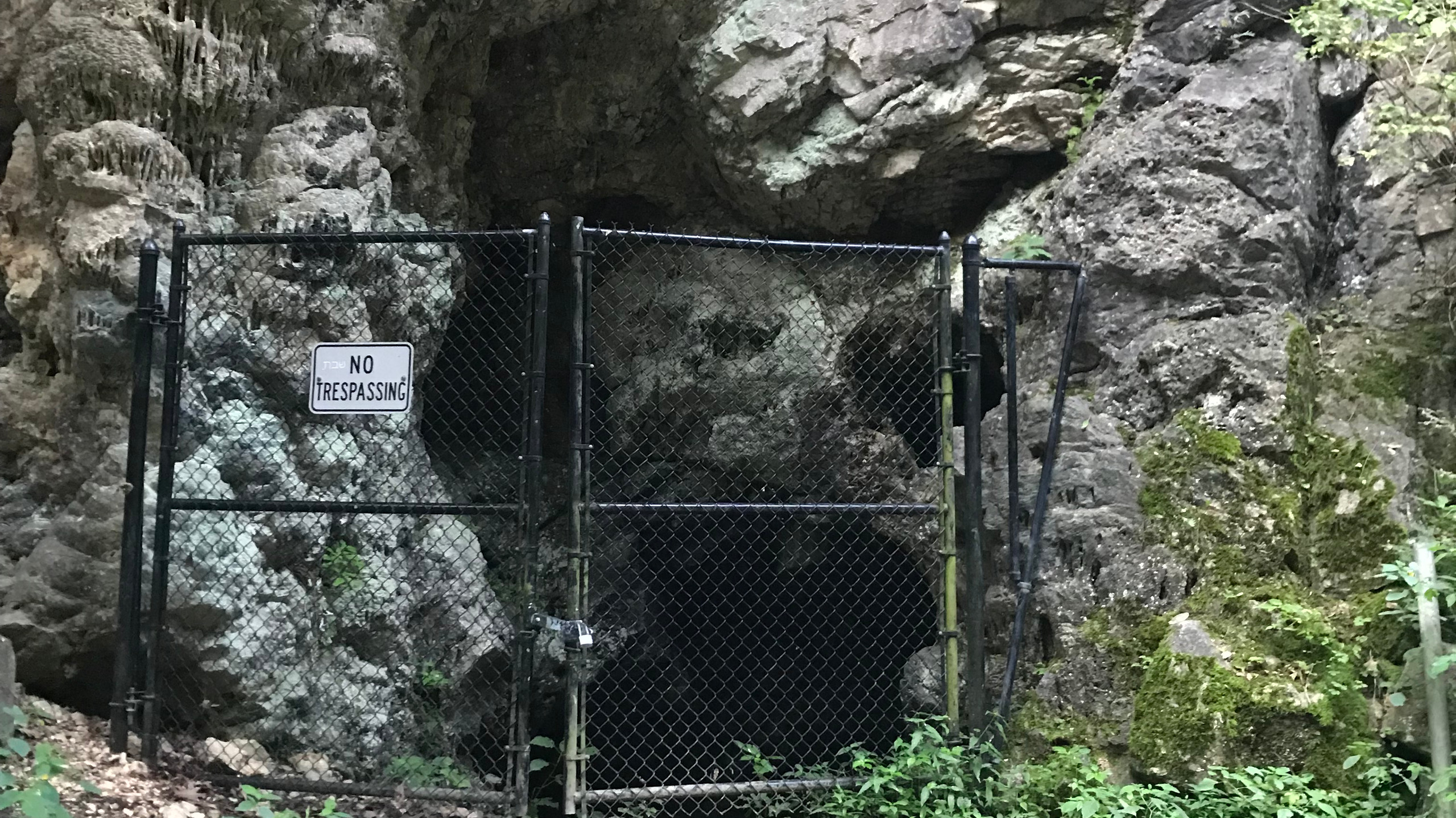 Cumberland Bone Cave