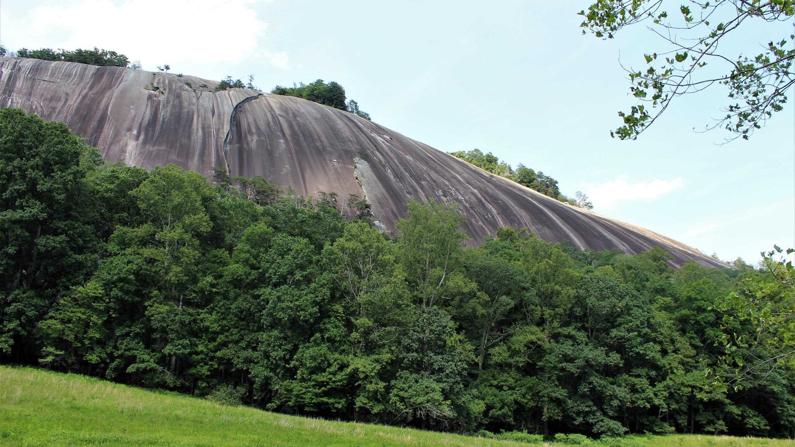 Base of Stone Mountain