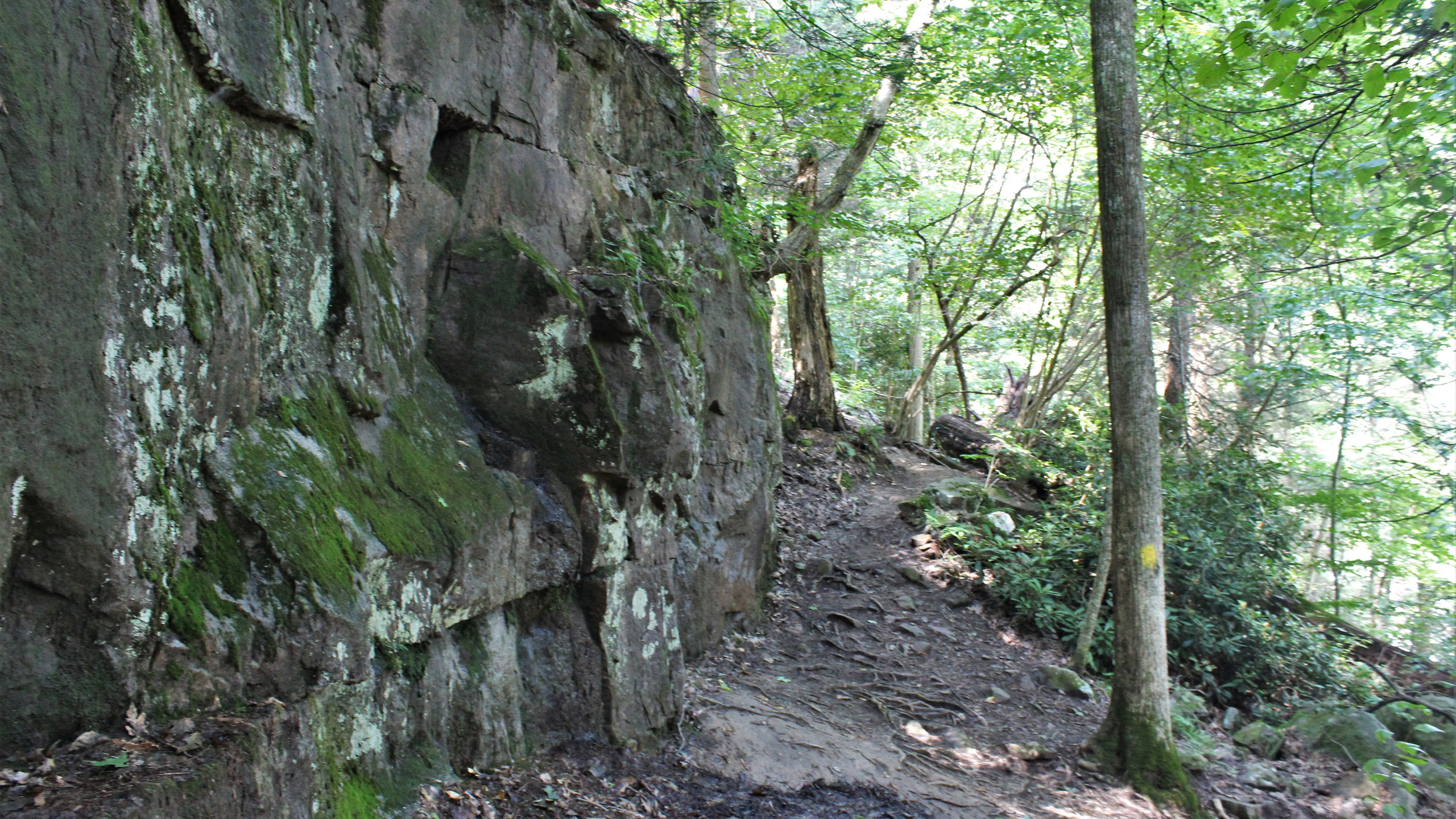Meadow Run Trail
