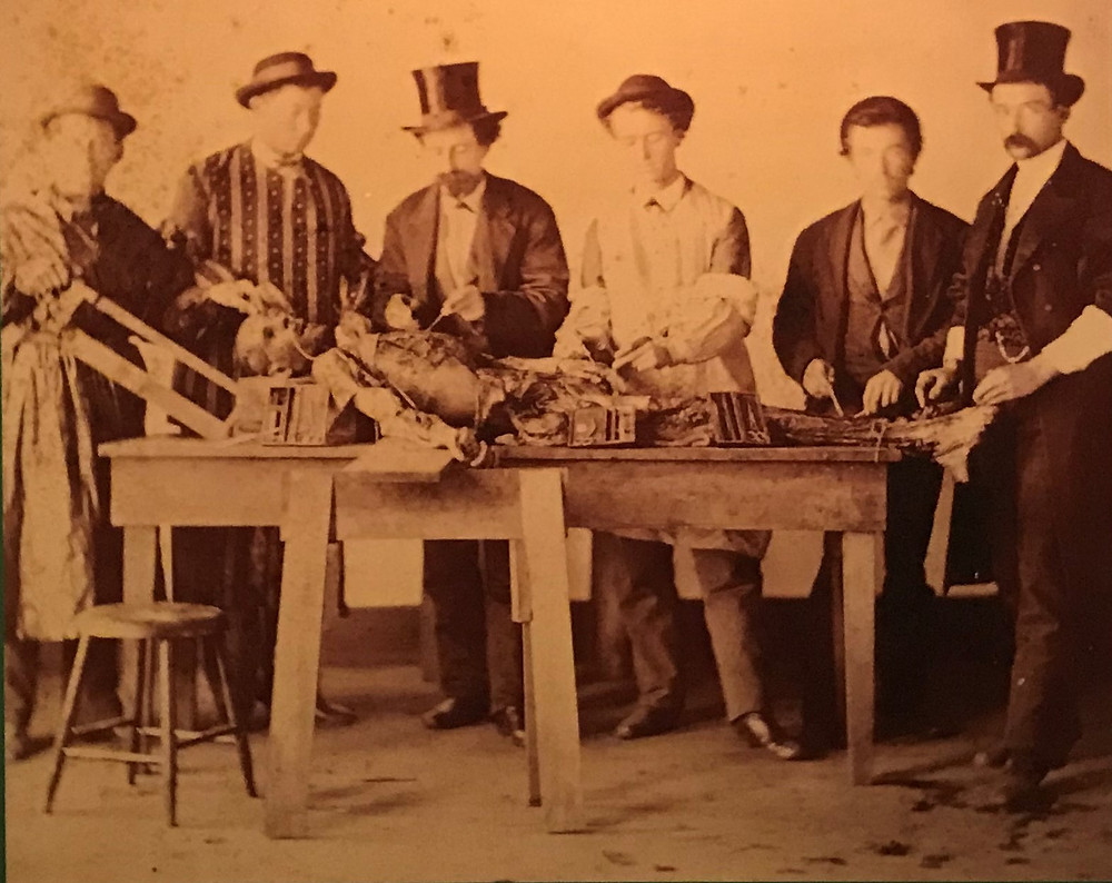 Young doctors working on a cadaver