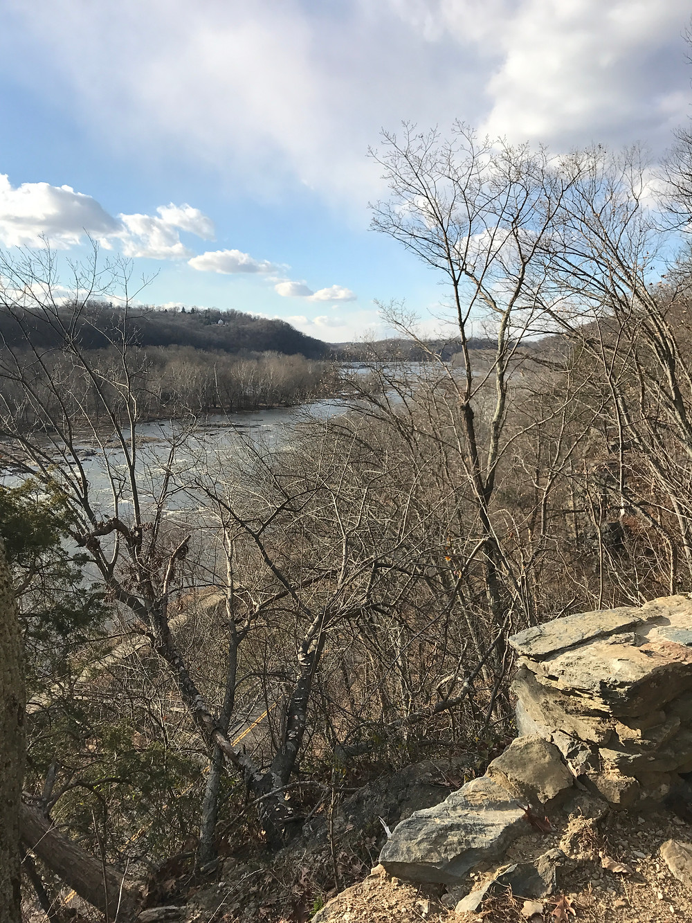 View of the Potomac a short way's up the trail