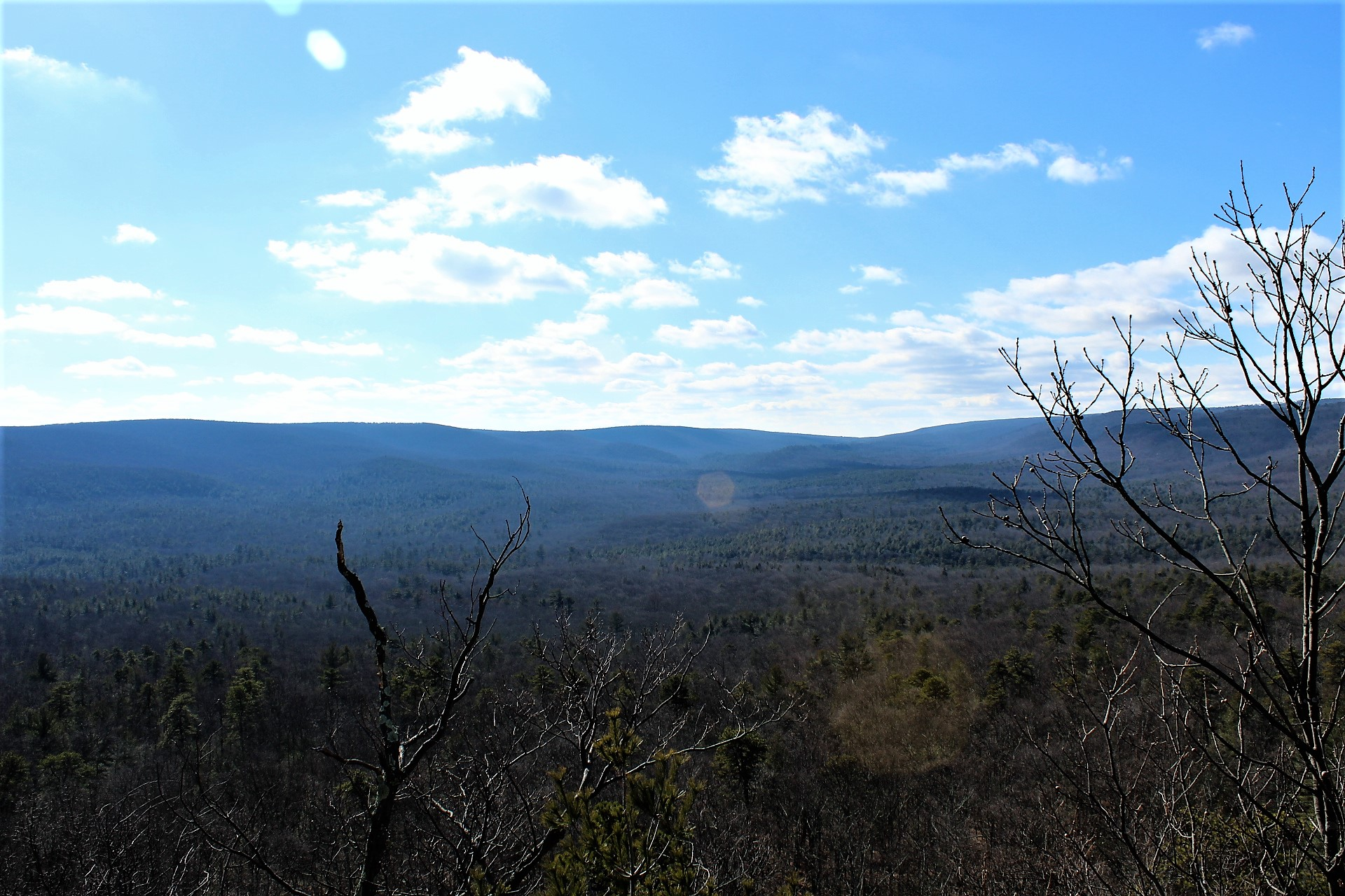 View from the Lookout Point