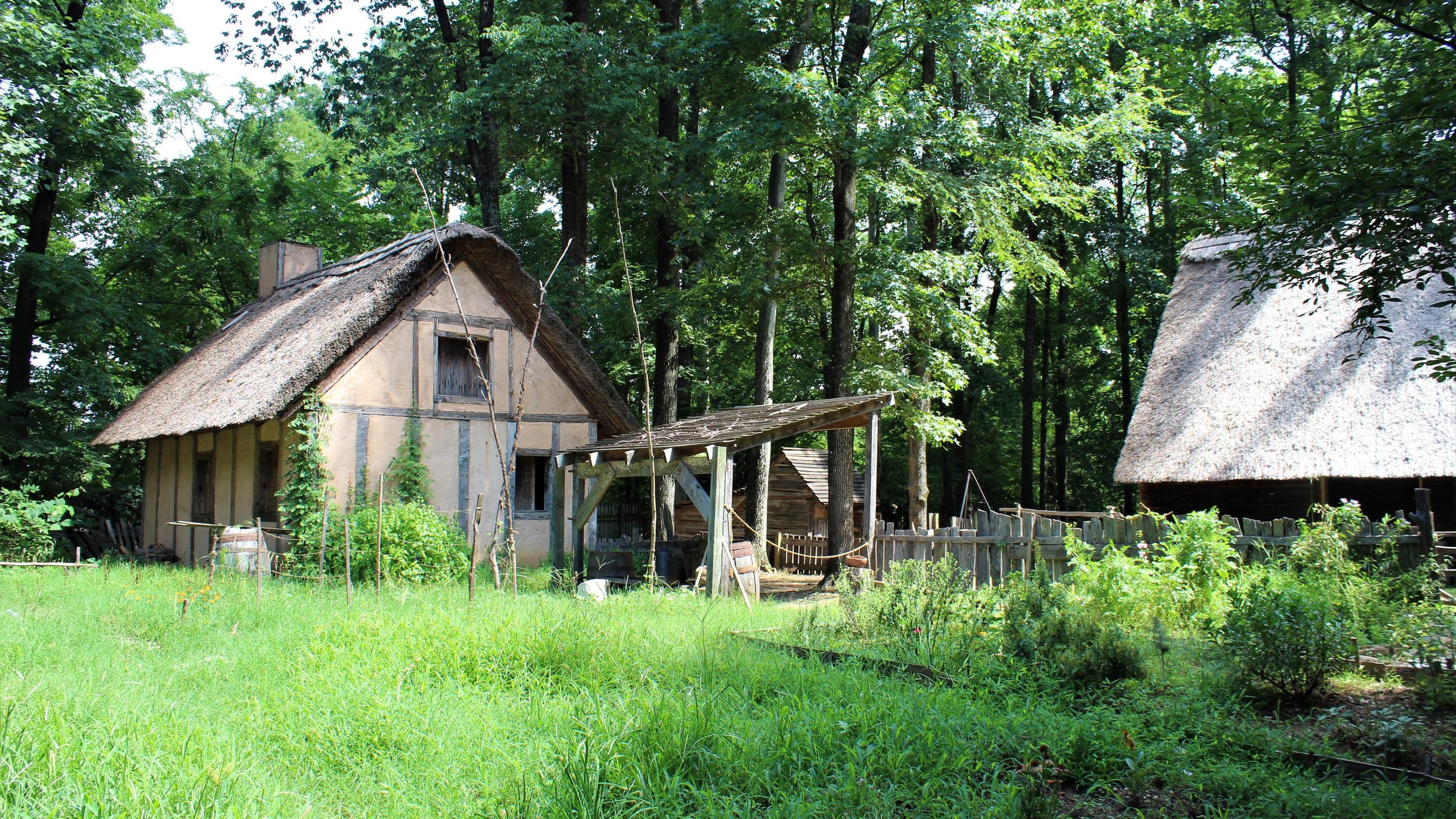 Proctor Plantation