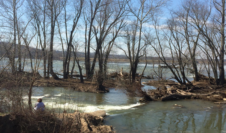 View of the Potomac at Seneca