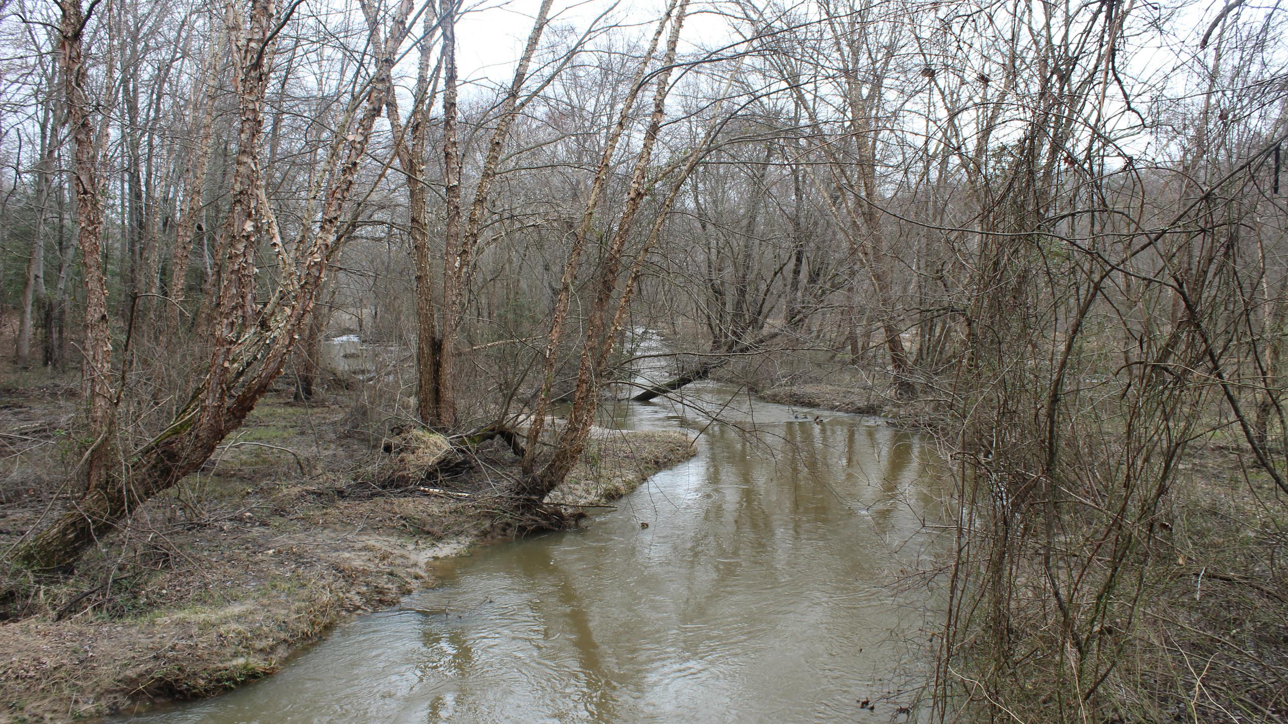 Totopotomoy Creek